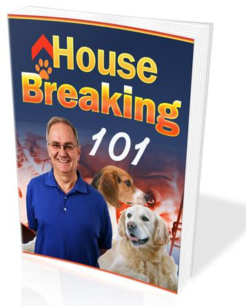 dog house breaking 101