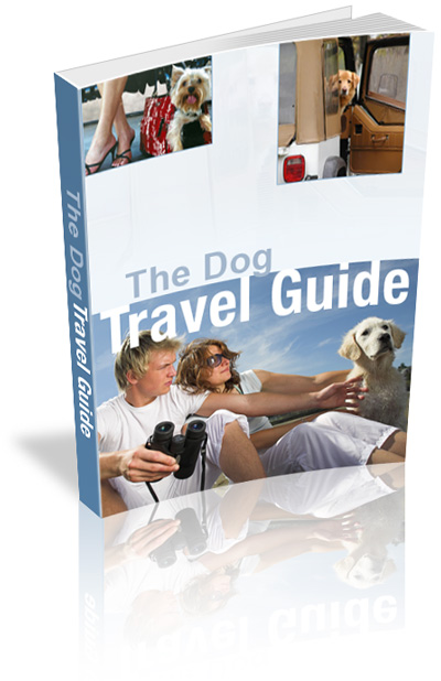 dog travel guide