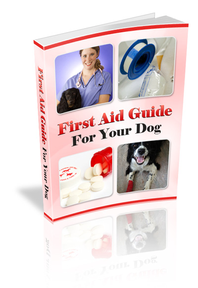 first aid guide for dogs